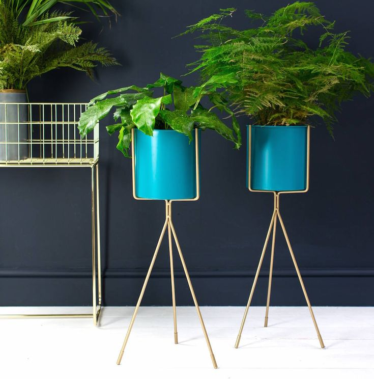Best 25 Tall Plant Stands Ideas On Pinterest Standing