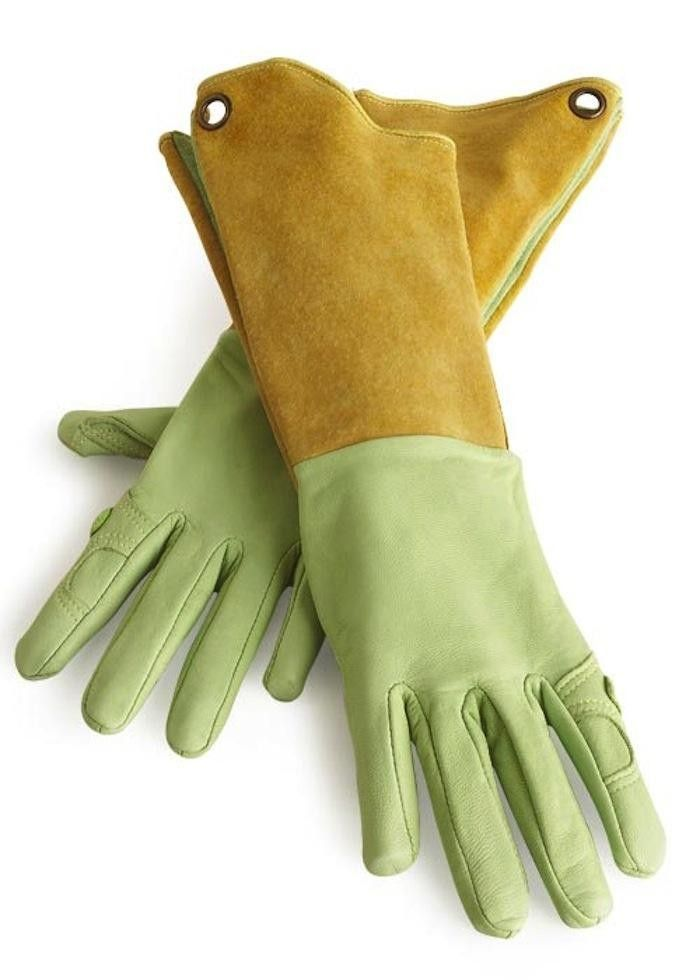 Pallina Garden Gloves, great for tasks like pruning fruit trees or rose bushes when you need protection for your arms.