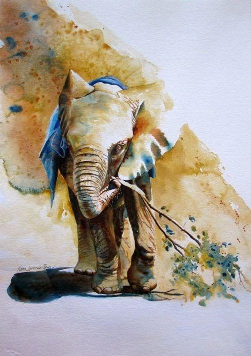 elephant illustration