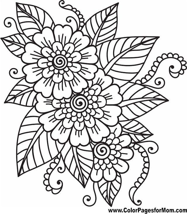 flower coloring page 41 more flower coloring pagescoloring pages for adultswatercolor - Color Pages For Adults
