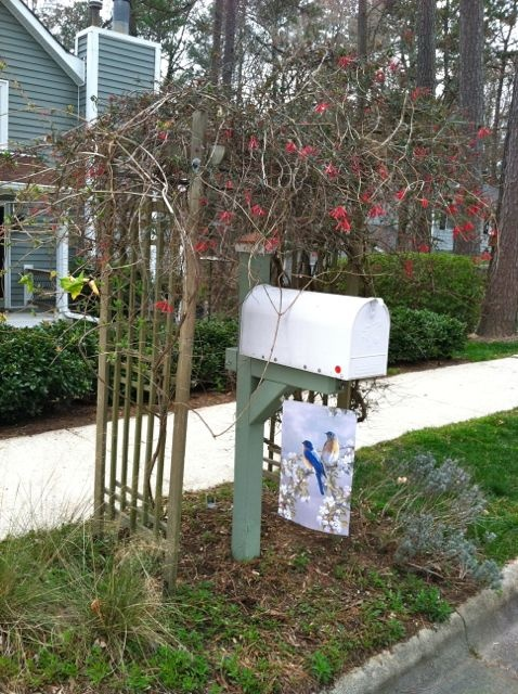 Clever idea for mailbox!
