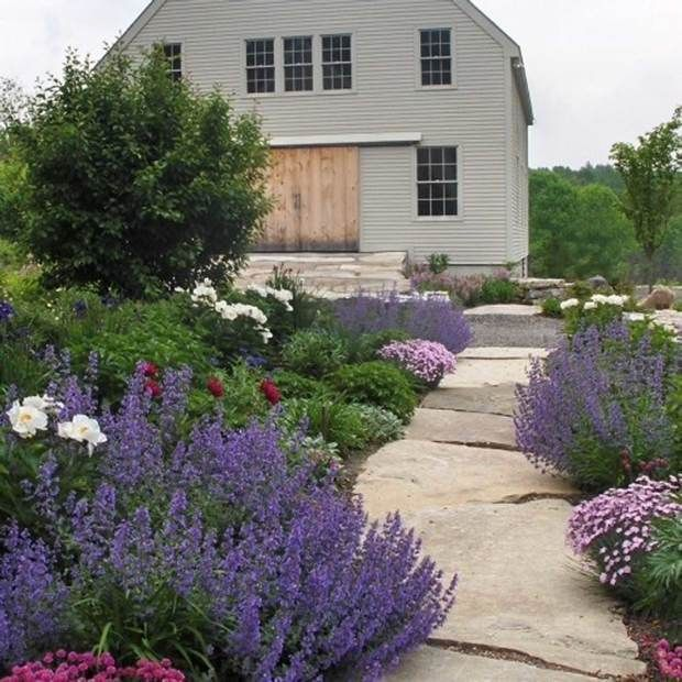Knock Knock; Front Doors Explored | Your Easy Garden