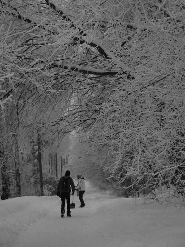 Winter Oslo - Norway