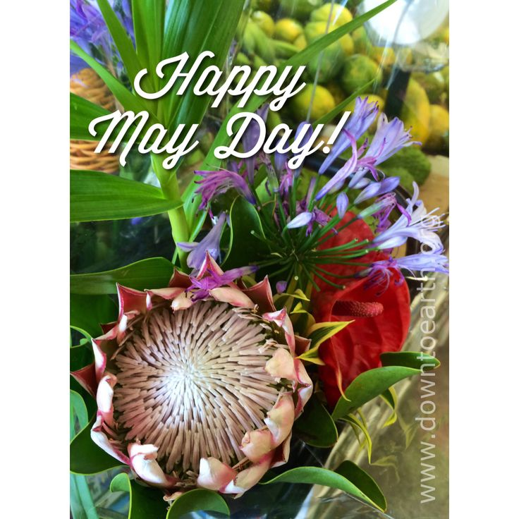 Lyric may day is lei day in hawaii lyrics : 36 best Lucky we live Hawaii!! images on Pinterest | Hawaii ...