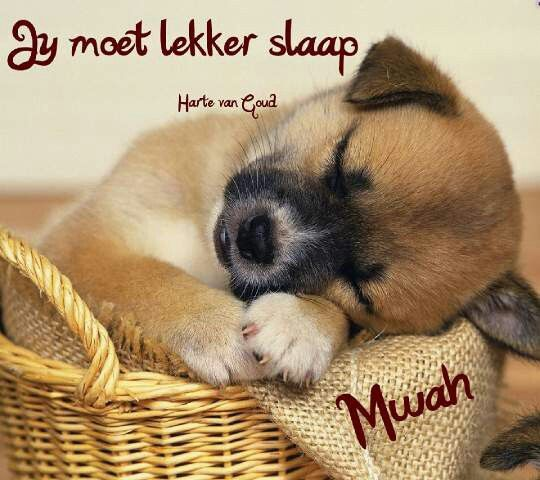 Jy moet lekker slaap!