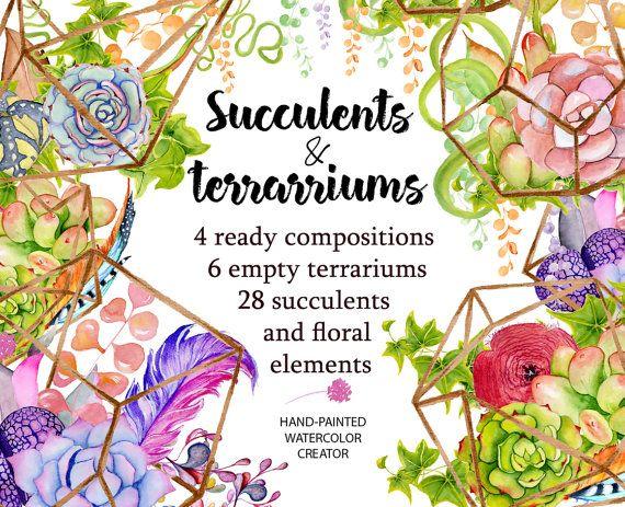 Watercolor Succulents and cactus terrariums. Cactus clipart. Hand painted clipart, succulents clip art. Instant download.