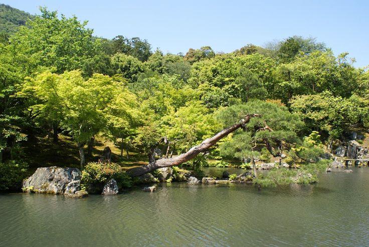 arashiyama kyoto japon tenryu-ji zen jardin