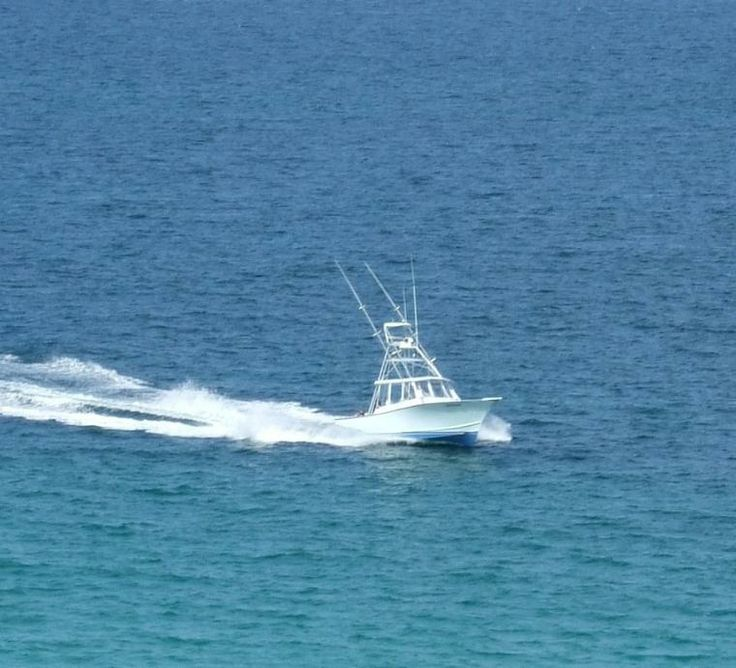 1000 images about deep sea boats on pinterest deep sea for Hollywood florida fishing charters