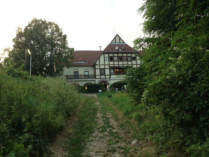 Sophienalpe Wien aus dem Wald