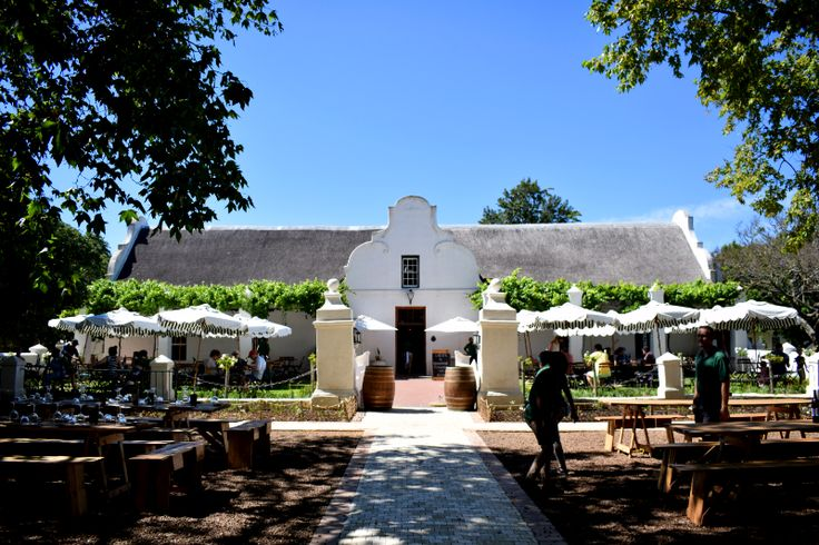 Our last day in Cape Town saw us wake bright and early ready for our wine tour through Stellenbosch. Recap the adventure!
