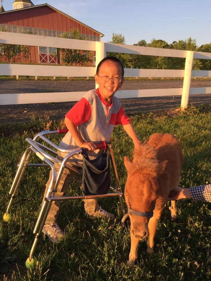 Cheese! #mini #pony #bigsmiles #happy #madisonfields #guest