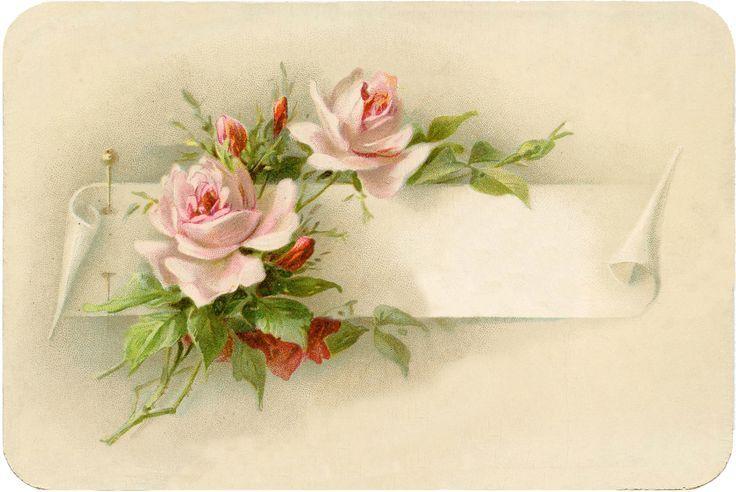 Старинная открытка розы, надписями хеллоу текст