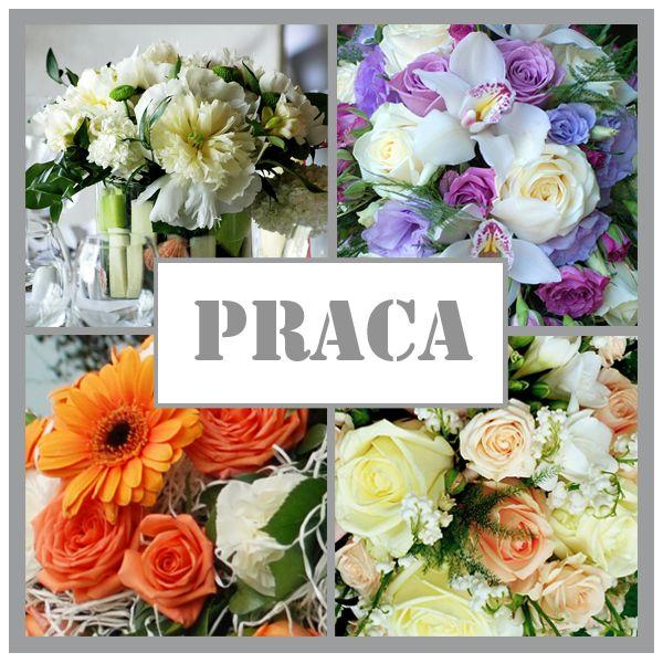 Lębork - Praca - Florysta - Kwiaciarnia KAJA