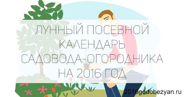 Лунный посевной календарь садовода-огородника на 2016 год