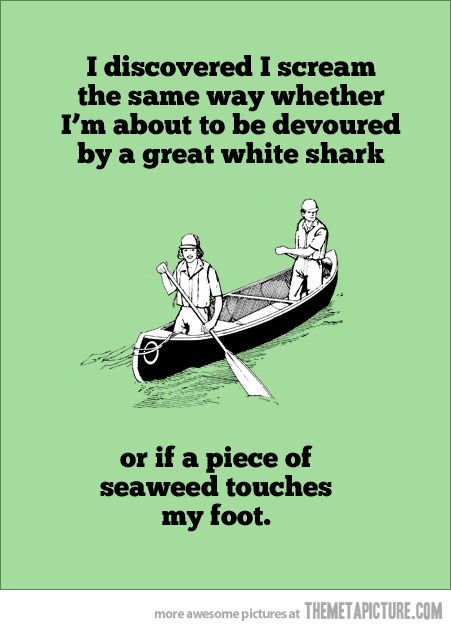 I scream the same way…: Great White Sharks, Laughing, Quotes, So True, Funny Stuff, Truths, Humor, Book Jackets, True Stories