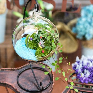 Honana HG-GD1 DIY Micro Landscape Plant Glass Hanging Ball with Iron Rack Home Decoration at Banggood