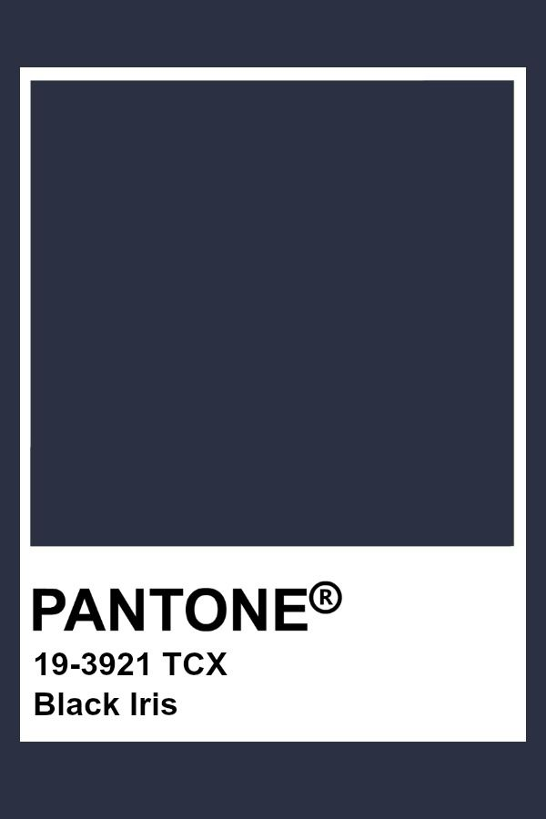 Pantone Black Iris in 2019 | Pantone colour palettes, Dark ...