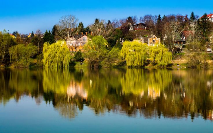 Reflections - Reflections on the calm lake on a warm spring morning.