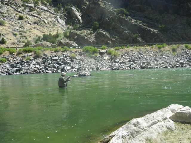 Kern river fly fishing forum cody wy favorite places for Cody wyoming fly fishing
