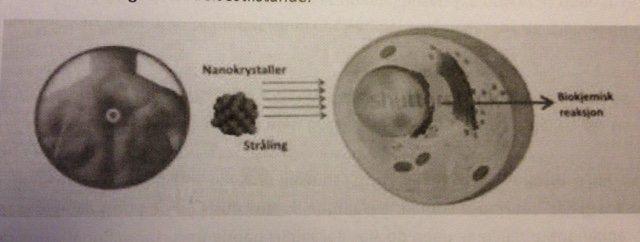 Dr. Pierre Volckmann forklarer ICEWAVES VIRKEMÅDE: Når plastrene sættes på huden, afgives infrarøde bølger og plastrenes organiske nanokrystaller aktiveres og stråler tilbage på huden med synligt lys og infrarøde bølgelængder. På den måde stimulerer plastrene nervesensorer i huden. Bølgelængden som plastrene udsender, provokerer en biokemisk reaktion inde i cellerne, som reducerer smerte og betændelsestilstande. #studie #smertebehandling #infrarødebølger #ekspert