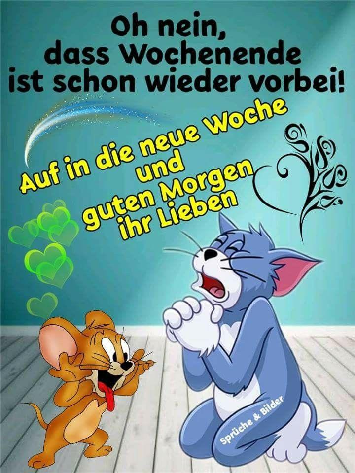 Pin Von Birgit Crews Auf Guten Morgen Guten Tag Guten Morgen
