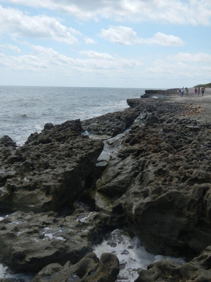 Blowing Rocks Preserve Jupiter FL   Beach   Where to go FL   Beaches