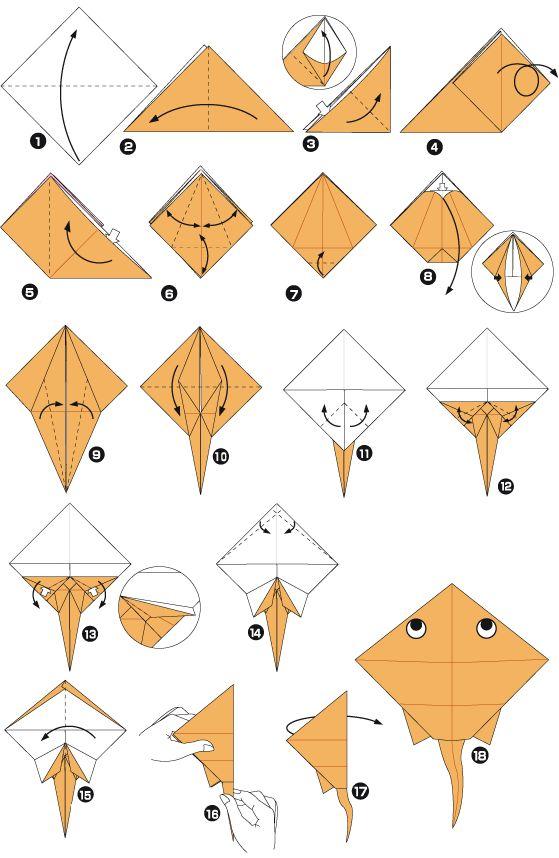 Raie en origami                                                                                                                                                                                 Plus