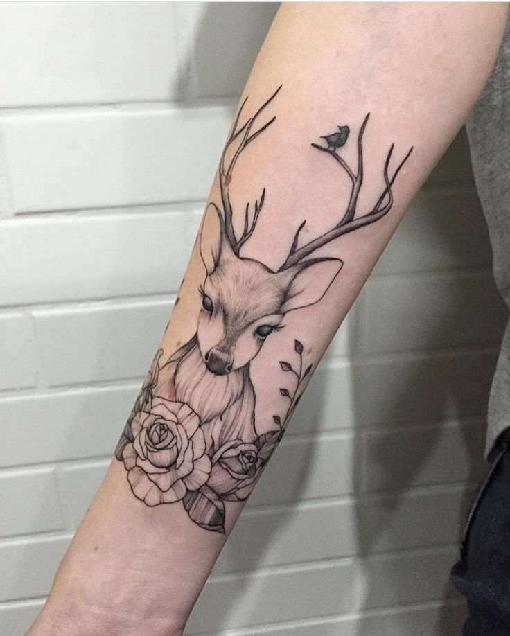 best 20 deer tattoo ideas on pinterest deer drawing antler tattoos and deer head tattoo. Black Bedroom Furniture Sets. Home Design Ideas
