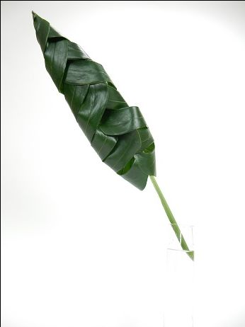 Tuck all the tips into the leaf