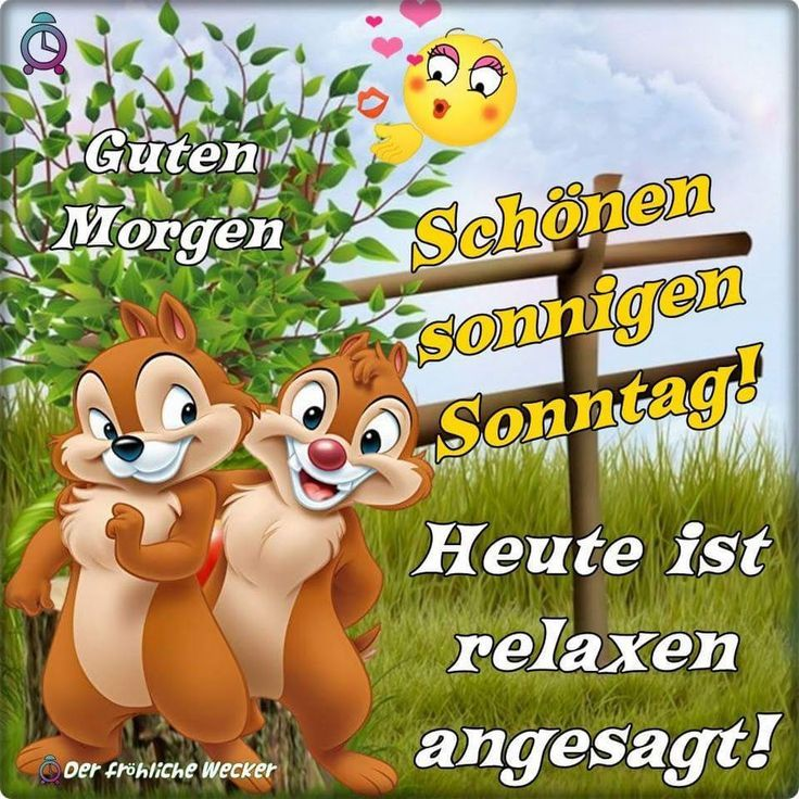 Sonntag Guten Morgen Sprüche Sonntag Guten Morgen Und
