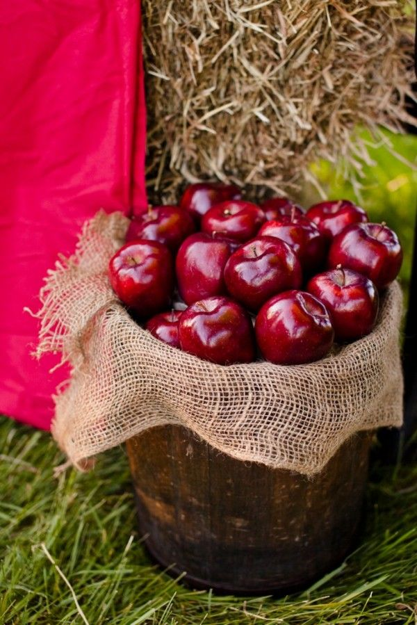 Country Apples At A Farm Wedding - I like the ideas and pictures on this site from a wedding