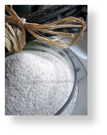 Sucre vanillé au thermomix