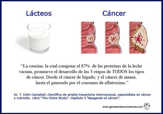 Lacteos camino al cancer
