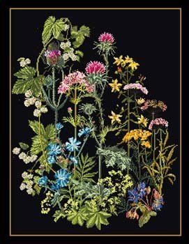 Wild Flowers on Black Aida - Cross Stitch Kit