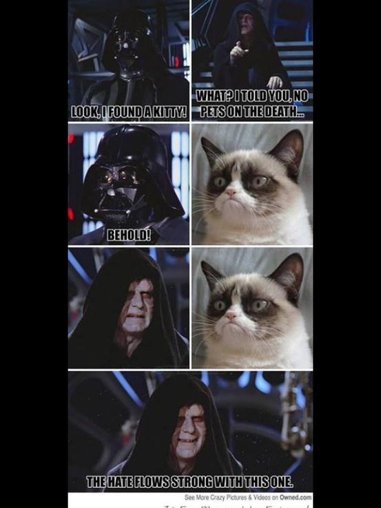 Grumpy Cat Star Wars Best Value