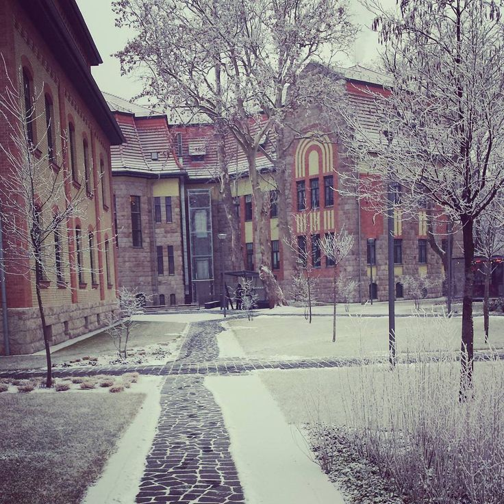 Winter on #campus @ibsbudapest ❄❄❄