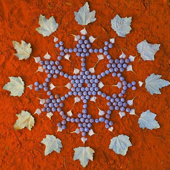 Поделки из цветов и листьев: летом и круглый год | Материнство - беременность, роды, питание, воспитание
