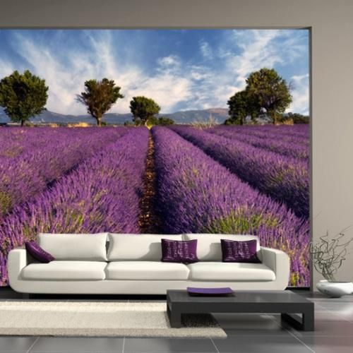 Modern wallpaper, digital prints and wall murals can change rooms and create stylish, bright and interesting home interiors