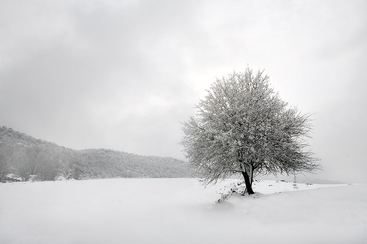 White nature by Christos Lamprianidis on 500px