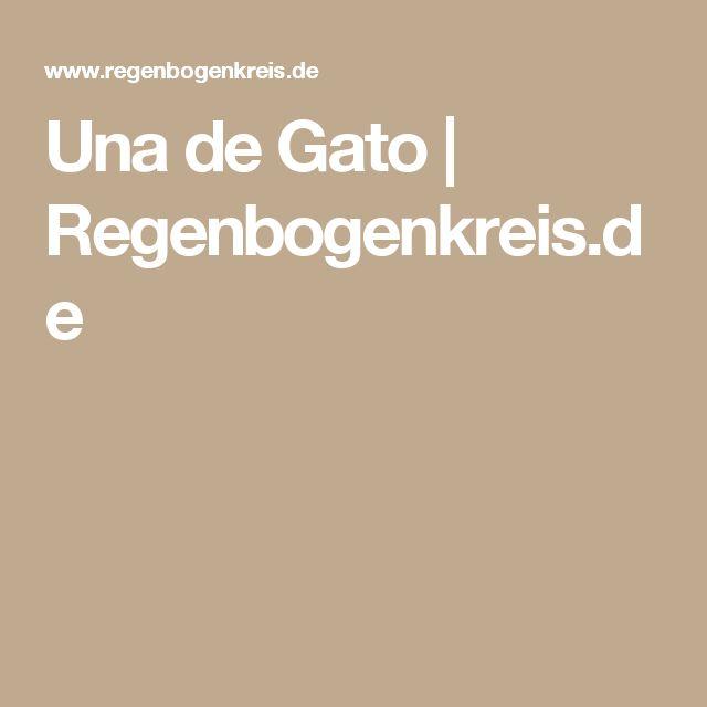 Una de Gato | Regenbogenkreis.de