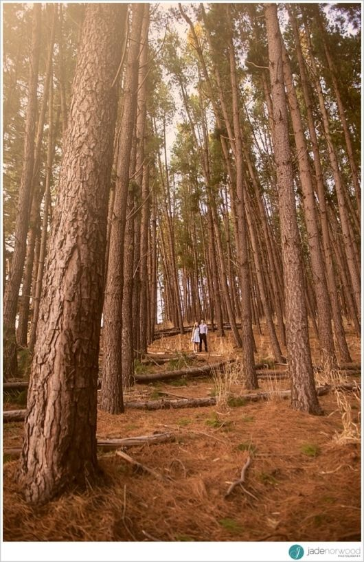 How fantastic is this engagement photo and the location - Blackwood Forest in South Australia. Beautiful photo by Jade Norwood Photography