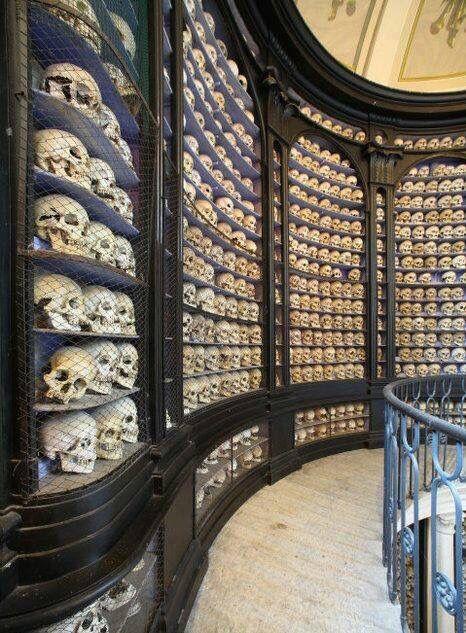 Hall of skulls. Mutter Museum, Philadelphia