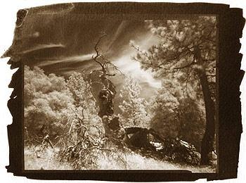 Nonexistent landscape, Dmitry Orlov