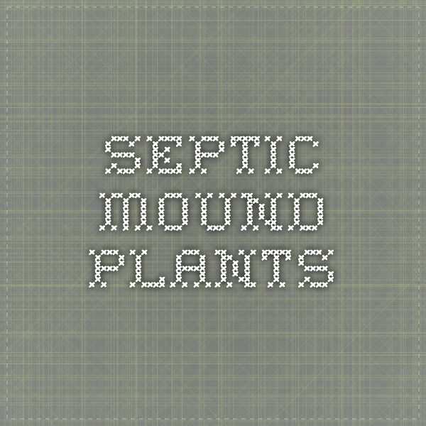 septic-mound-plants