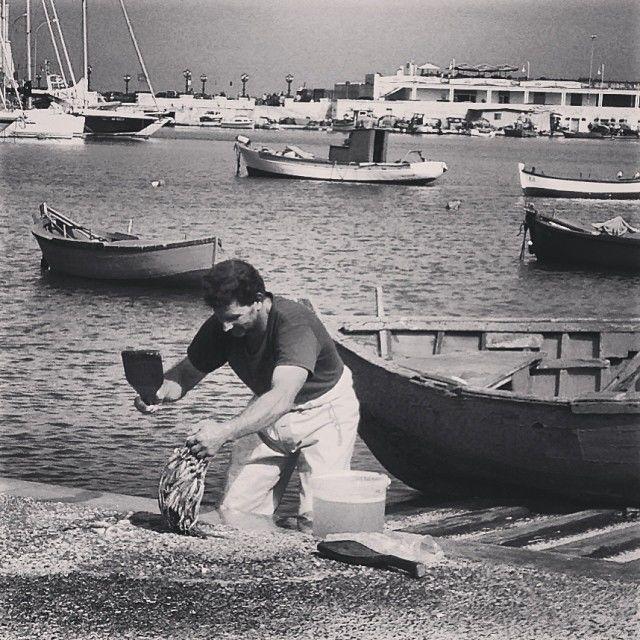 PESCE / FISH   |   #my_marina eBook   |   Photo courtesy of @Laura Jayson Brassington [http://instagram.com/brassy]