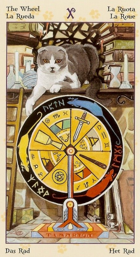 Wheel of Fortune - Tarot of Pagan Cats Find out what The Wheel of Fortune means for you: www.tarotbyemail.com