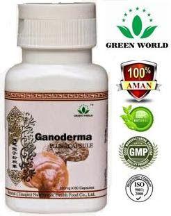 """Obat Kanker Lambung Yang Mujarab >> Ganoderma Plus Capsule. MAMPU mengobati kanker lambung secara AMAN TANPA EFEK SAMPING. Obat Herbal Kanker Lambung yang AMPUH. Khusus pemesanan hari ini, """"TRANSFER SETELAH OBAT SAMPAI"""" (Pemesanan 1-2 botol)."""
