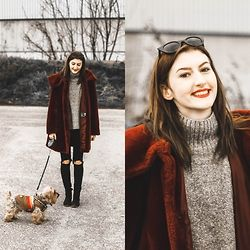 Bari Bircak - Mango Sunglasses, H&M Sweather, Mommy's Coat, Zara Pants, Stradivarius Shoes - DOG LOVE
