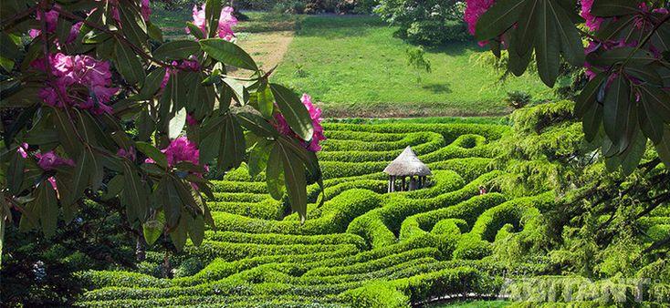 Сад-лабиринт. История возникновения