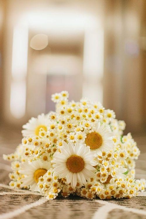 bouquet mariée, mariage, wedding, bride, flowers, fleurs, jaune, yellow, marguerite